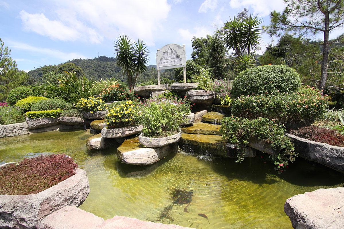 Best Indoor Garden Colmar Images Joshkrajcik Us Joshkrajcik Us